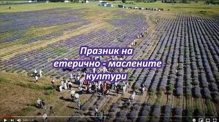 Фестивал на етерично-маслените култури - Карово